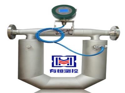 高精度质量流量计 科里奥利液体质量流量计